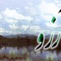 رابطه مرگ و آرزوها از نگاه امیرالمۆمنین (ع)