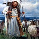 آیا حضرت سلیمان و داوود(ع) قبل از پیامبری چوپان بودند؟